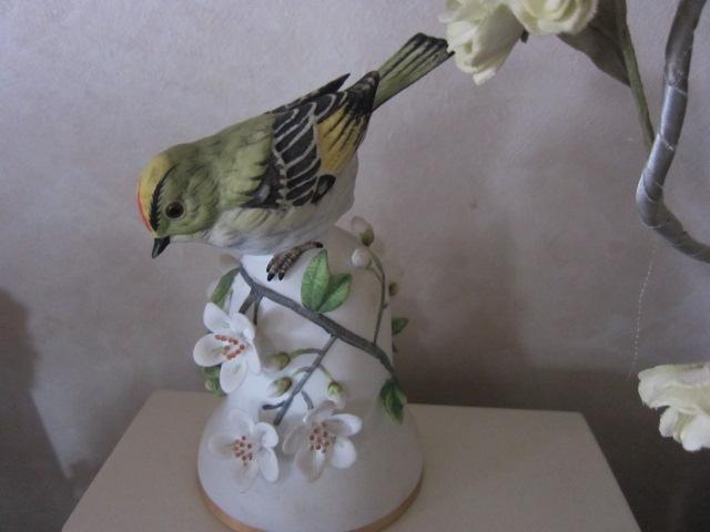 鳥・ロ.JPG