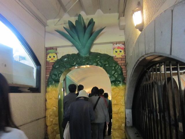 2・パイナップル園内2.JPG