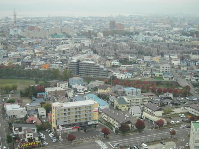 2・五稜郭タワーから下2街.JPG