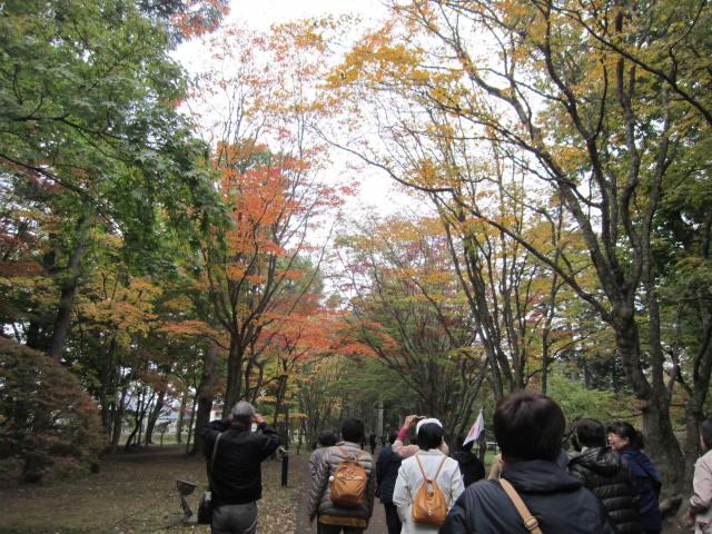 2・香雪園紅葉.JPG